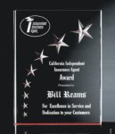 RIST-7 3 Dimensional Carved Star Plaque Achievement Award Trophies