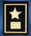 Acrylic Plaque with Brass Star Achievement Award Trophies