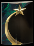 Green Marble Rounded Shooting Star Acrylic Achievement Awards