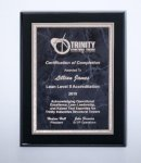 Black High Lustr Plaque with Gray Marble Plate Employee Awards