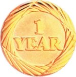 1 Year Pin Employee Awards