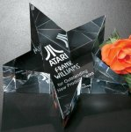 Slanted Star Paper Weight Executive Gift Awards