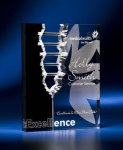 Rectangle Crevice Acrylic Award Golf Awards