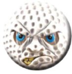 Ball Marker Face Golf Awards