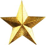Star Pin Lapel Pins