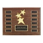 Perpetual Star Plaque Patriotic Awards